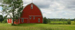Steel Agricultural Buildings